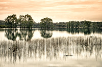 Sunrise over Lake Piney Z in Tallahassee, Florida